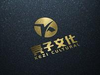 上海壳子文化定制网站建设