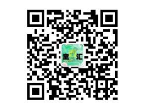 童星汇定制微官网二维码