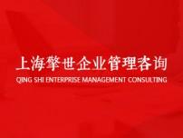 上海擎世企业管理咨询有限公司网站建设