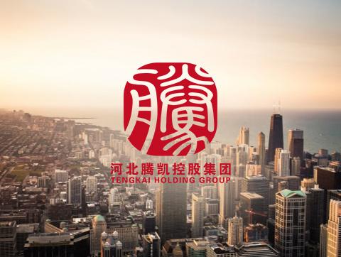 河北腾凯控股集团-投融资类bob电竞app建设定制开发