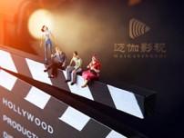 上海迈伽影视传媒有限公司网站设计制作