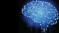 智能门户系统开发解决方案