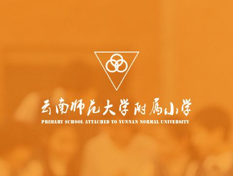 云南师大附属小学网站定制设计开发建设项目