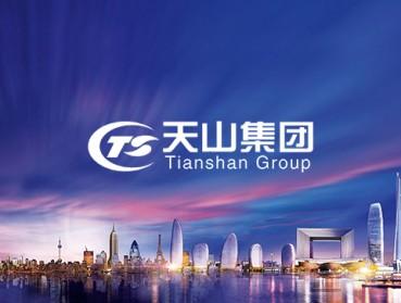天山集团旗下天山资本运营管理系统定制开发