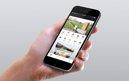 手机网站设计要注意哪些方面?